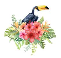 Aquarelle oiseau Toucan en bouquet tropical.