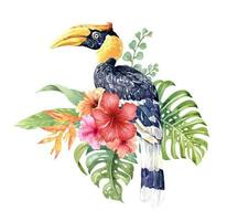 Watercolor tropical Great hornbill in Hibiscus bouquet.