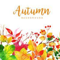 Bello fondo delle foglie di autunno dell'acquerello