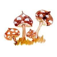 Aquarell-Pilze
