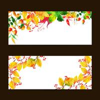 Autumn  Banner Set vector