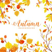 Beautiful Watercolor Autumn Leaves Background vector