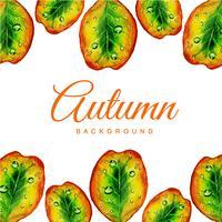 Rainy Autumn Leaves Background