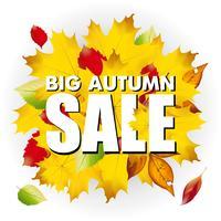 Großer Herbstverkaufs-Geschäftssaisonalhintergrund mit farbigen Blättern auf Weiß