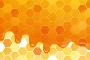 Sweet honey glossy background with copy space for your text vector