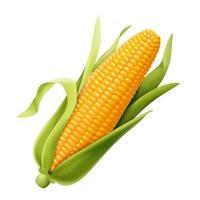 Sabugo de milho orgânico doce