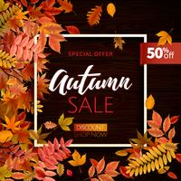 Bright banner with leaves for autumn sale