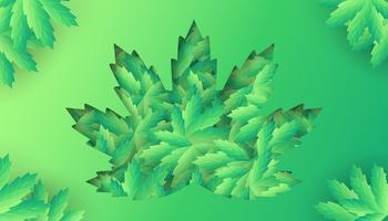 Folhas de cannabis em recorte de folha