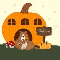 Raposas no cartão da abóbora de outono