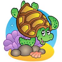 Cartoon Style Turtle and Seaweed
