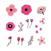 set of pink flowers vector