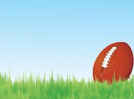 Football en herbe