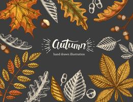 Vintage Autumn background with hand drawn doodle and colored leaves on black