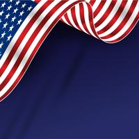 America Flag Background  vector