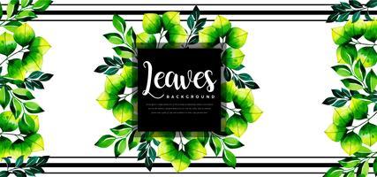 Framed Leaves Background
