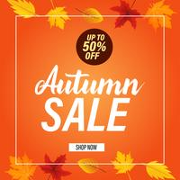 Autumn sale banner background with fall leaves Vector