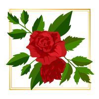 Flor de rosa emoldurada vetor