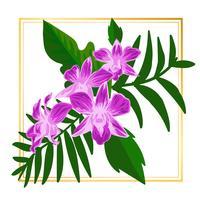 Vector floral enmarcado
