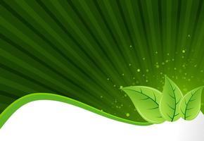 Fundo de panfleto com folhas verdes vetor