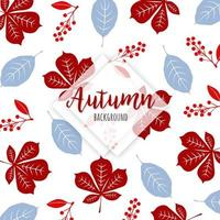 Beautiful Autumn Colorful Leaves Background