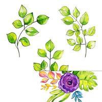 Collezione di foglie di inverno e Capodanno dell'acquerello