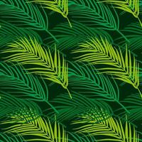 Seamless tropical pattern. Summer exotic plants ornament.