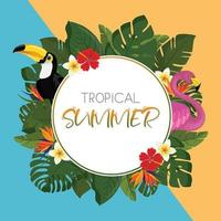 Tropical summer round frame design vector
