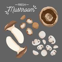 raccolta di funghi freschi