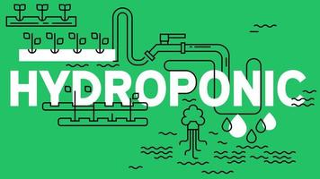 Hydroponic banner with green background