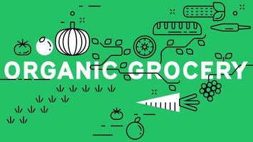 Organic grocery banner with green background