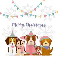 Christmas greeting with dogs
