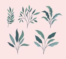 green leafs natural set icons vector