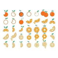 Ensemble de collection de fruits orange