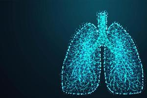 low poly making human lungs  vector