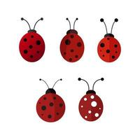 ladybugs icon set on white background