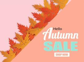 Autumn sale design with autumn leaves on pink vector