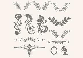 floral ornament collection vector