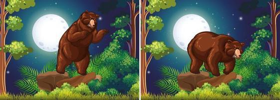 Plats med brunbjörnen i skogen