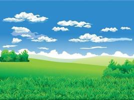 Gräsfält med träd