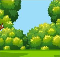 Bosque de dibujos animados y hierba