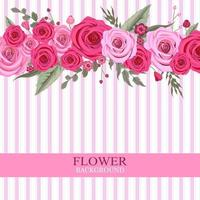 Pink Rose Flower Background vector