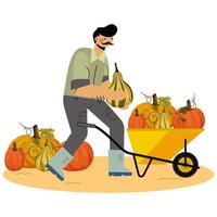Farmer Harvesting Pumpkins in Flat Style