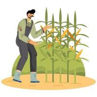 Un agricultor está plantando maíz