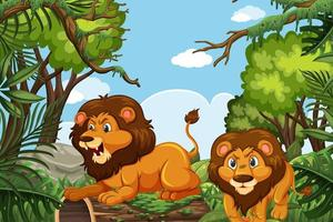 Lions in jungle scene vector
