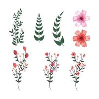 set tropical flowers with exotic branches leaves plants