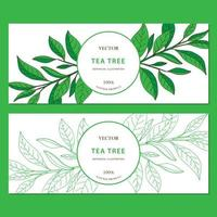 Tea Tree. Set of 2 horizontal hand drawn web banners with herbs isolated on white background.