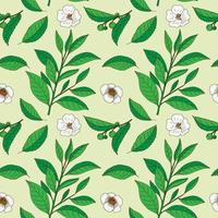 Tea Tree leaves and flowers. Hand drawn vintage seamless pattern.