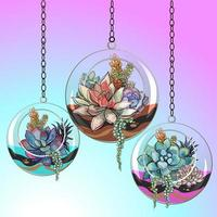 Flowers succulents in glass pots. Vector.