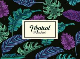 tropical leaves plants and exotic label