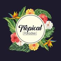 label with tropical flowers plants and leaves